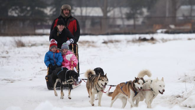Dogs from Shemhadar Dog Sled Adventures pull a sled around the small track at the Fire & Ice Festival on Saturday in Rochester.
