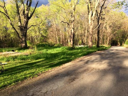 The body of Hannah Wilson was found in this area along