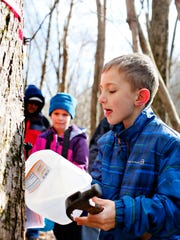 Tavin Snyder, 8, front, of Jacobus Borough, hangs a milk carten onto a spout tapped into a red maple tree during a Maple Sugaring Story Walk at Richard M. Nixon County Park in Springfield Township, Sunday, Feb. 26, 2017.Dawn J. Sagert photo
