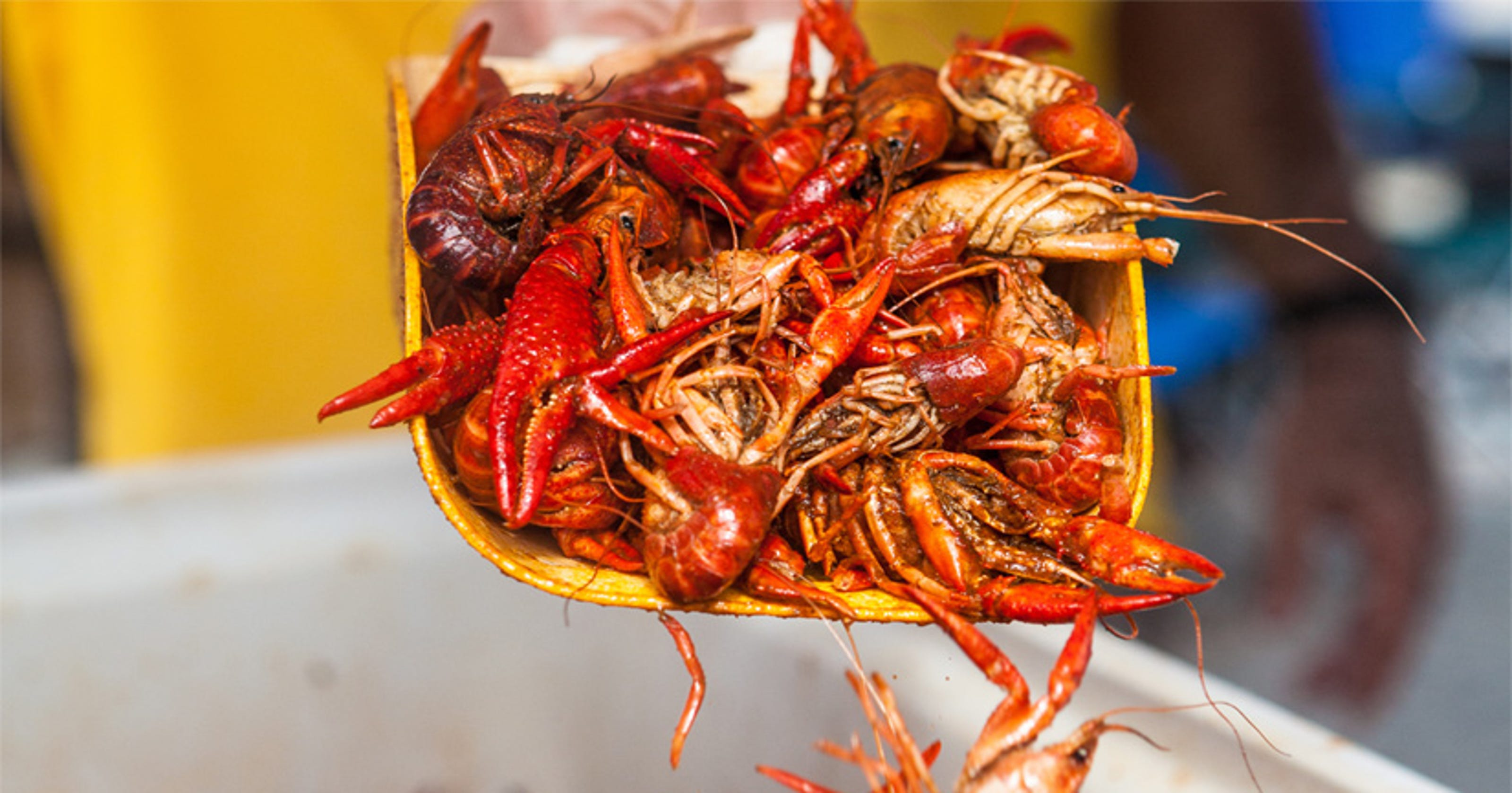 18 delicious facts about Louisiana crawfish