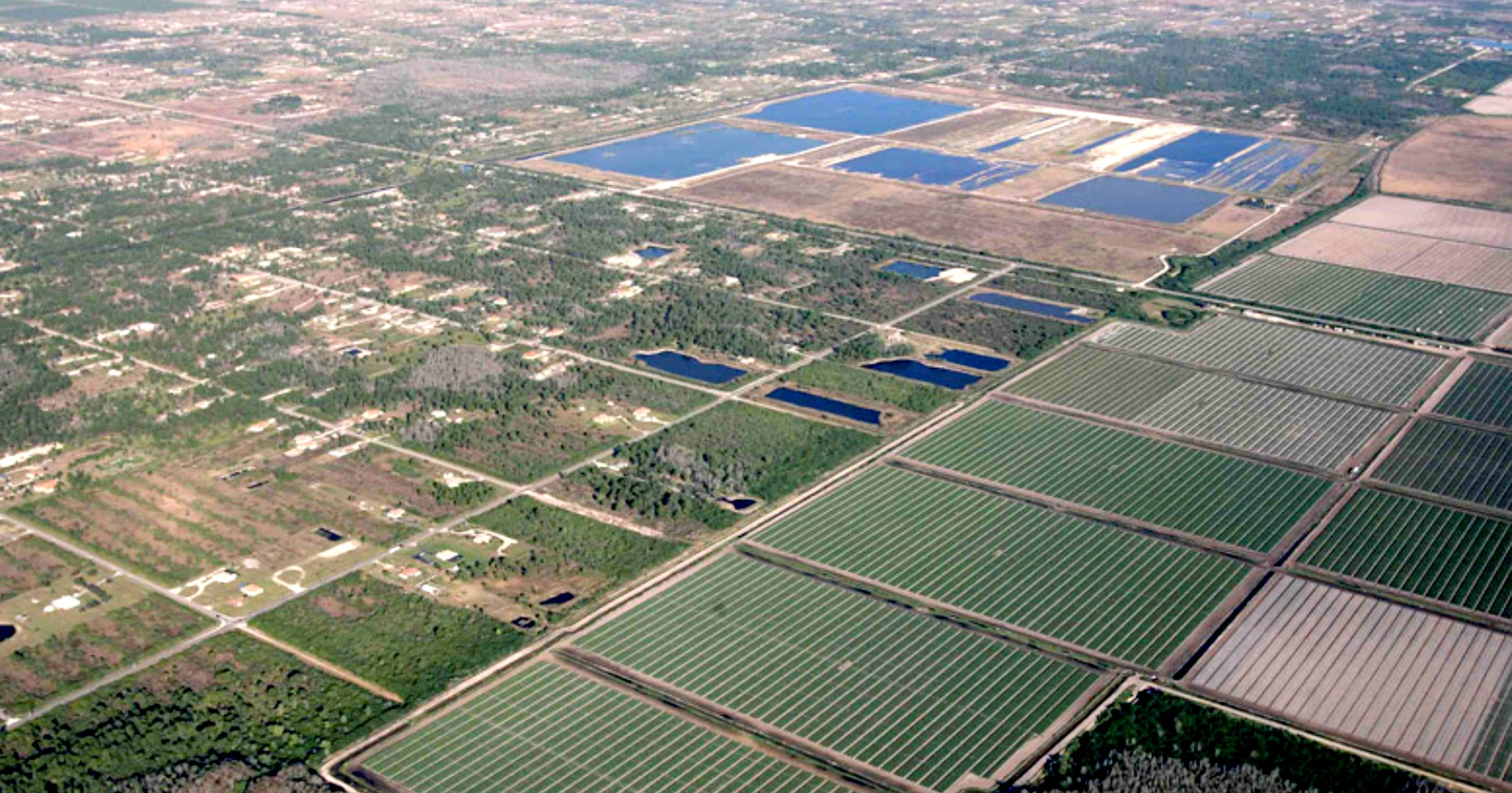 Collier Enterprises plans 1,000-acre development in eastern