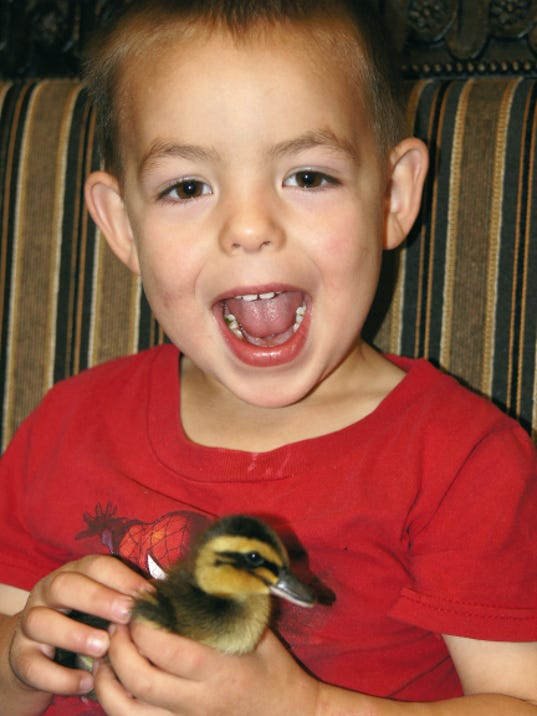 Bill Armendariz — Headlight Photo   Caleb Keeler, 3, is the proud owner of a fast racing duck his mother purchased this spring at the Tractor Supply Store Co. in Deming. Caleb hasn't named his duck, but says he is hard to catch on the ground. By the way, Caleb's mother, Codi Keeler is the reigning 2014 Great American Duck Race Queen.