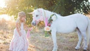 This horsedoubles as a unicorn for photo shoots.