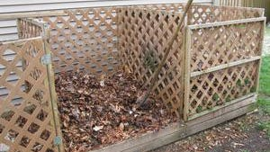 Rake leaves and add them to your compost pile or locate them near the garden so they are handy to add as mulch next spring and summer.