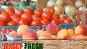 Jersey Fresh vouchers are now available for income-eligible seniors.