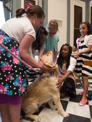 Fourth graders from Learning Express Academy in Newark pet Rep. Helene Keeley's (D) Wilmington South, golden retriever Hebe in the house chambers after the house voted to make the golden retriever the state dog for one year.