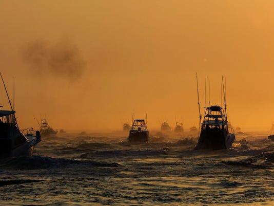 Shark Fishing Tournament Held On Eastern Tip Of Long Island