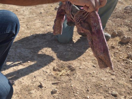 Yazidi journalist and soldier Sahar Attai holds the