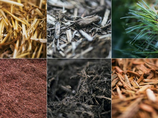 With so many options and techniques, it's tough to know what your plant beds and gardens need when it comes to mulching. The Weekly Record breaks it down, and gets the dirt on mulching at this time of year.