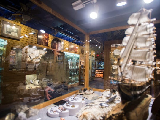 Discoversea Shipwreck