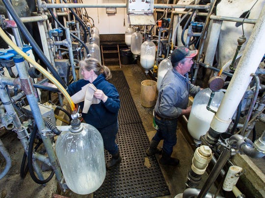 Heidi and Mike Dolloff work in the milking parlor on their farm in Springfield on Thursday, May 10, 2018.