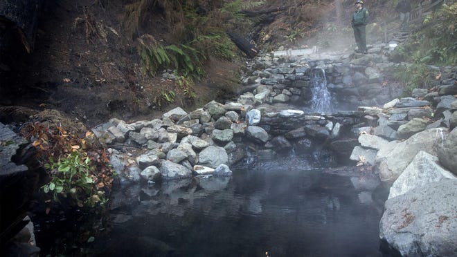 District Ranger Darren Cross, McKenzie River Ranger District, looks over the Terwilliger Hot Springs during a visit in November 2018 to the popular area affected by fire. [Andy Nelson/The Register-Guard, file] - registerguard.com