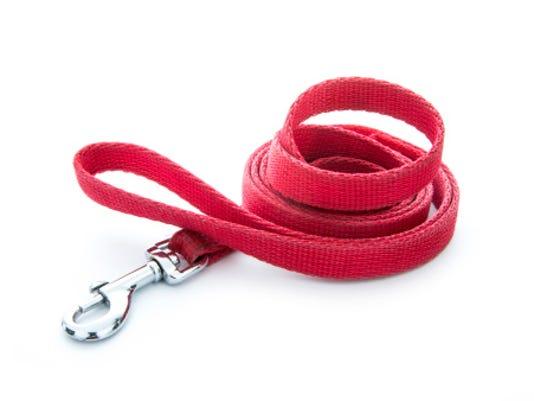 leash.jpg