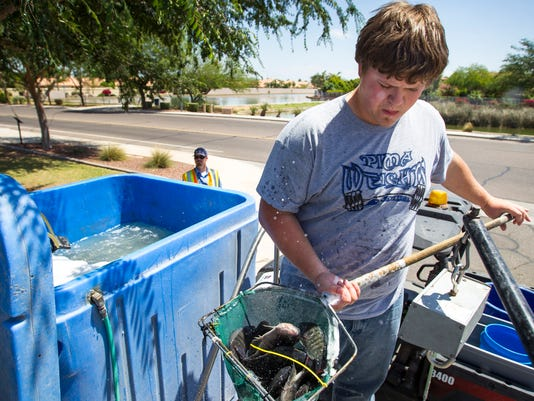 Fish in West Valley lakes provide more than a big catch