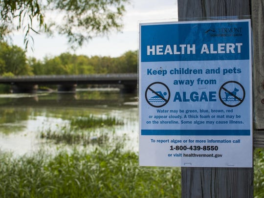 A sign warns visitors against contact with cyanobacteria (also known as blue-green algae)at the Rock River fishing access in Highgate Springs.