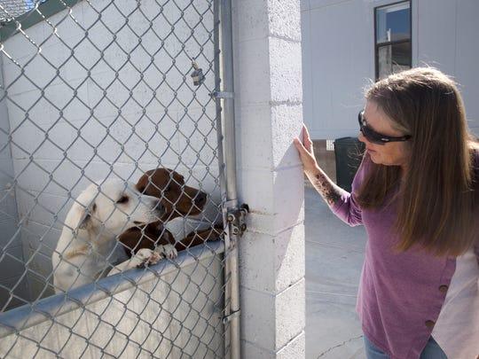Aztec Animal Shelter Director Tina Roper, Wednesday, Nov. 1, 2017 at the Aztec Animal Shelter.