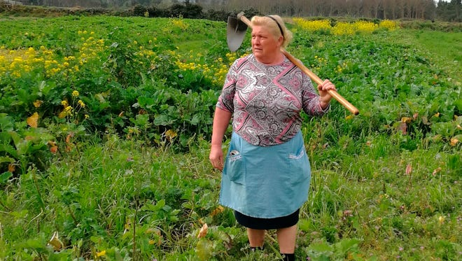 Dolores Leis stands in a field on her farm in Galicia, in northern Spain, Thursday April 19, 2018. Leis, has found unexpected fame on social media after many found she bore a striking resemblance to U.S. President Donald Trump. Thousands of responses flooded in last week after a journalist reporting on farming in northwestern Spain posted on Instagram a picture of Dolores Leis dressed in farm clothing with a hoe over her shoulder.