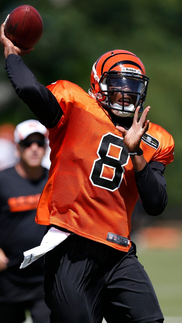 Bengals quarterback Josh Johnson runs a play during