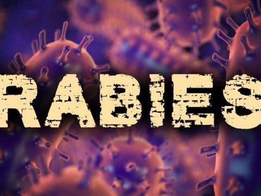 636582941243745035-rabies-graphic-1522707974767.jpg-38897358-ver1.0-640-360.jpg