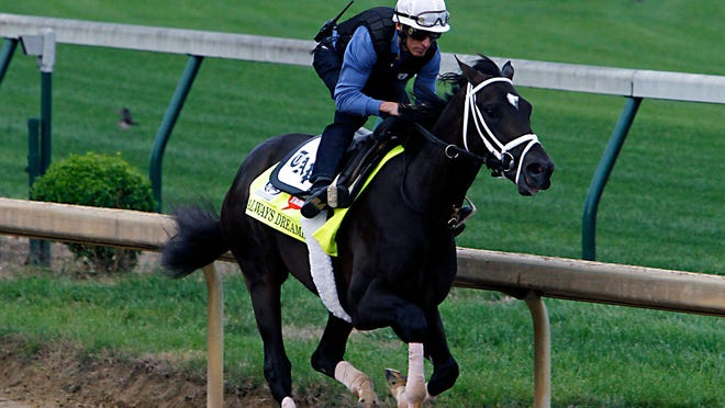 Kentucky Derby hopeful Always Dreaming works out under jockey John Velazquez at Churchill Downs in Louisville, Ky. The Southwest Florida Military Museum and Library is having a Kentucky Derby party May 5 to raise funds for building improvements.