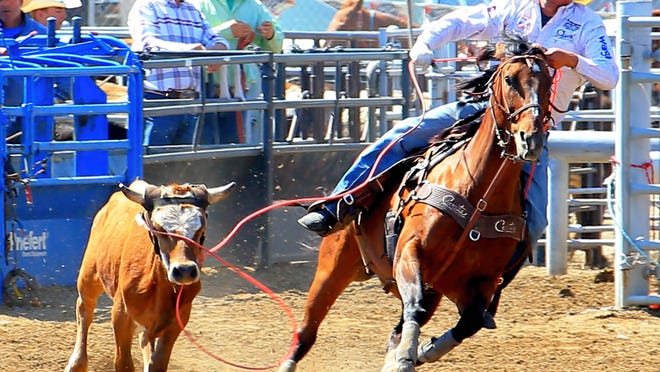 Dustin Bird will be competing at the Big Sky Pro Rodeo in Great Falls both Wednesday and Friday nights this week.