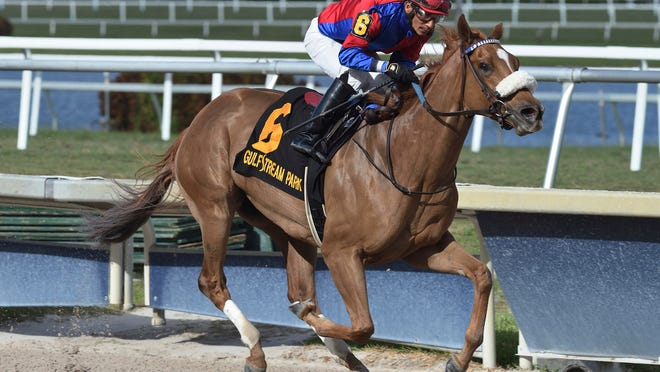 In this image provided by Gulfstream Park, Swiss Skydiver, ridden by Paco Lopez, wins the  Gulfstream Park Oaks horse race at Gulfstream Park, Saturday, March 28, 2020, in Hallandale Beach, Fla. (Ryan Thompson/Coglianese Photos, Gulfstream Park via AP)