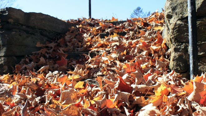 The city of Asheville will no longer give out free leaf bags.
