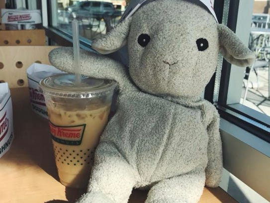 Lamby likes his iced coffee.