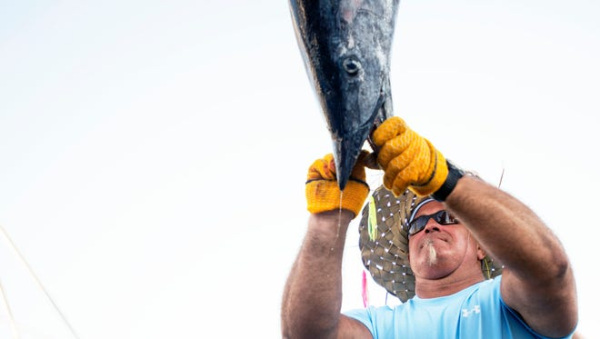 Weight master Alex Davis weighs Ken Lord's 66-pound wahoo on day two of the White Marlin Open in Ocean City.