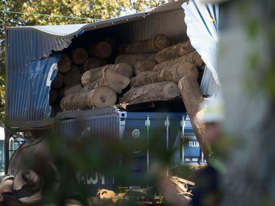 Logs spill out of a shipping container carried by a