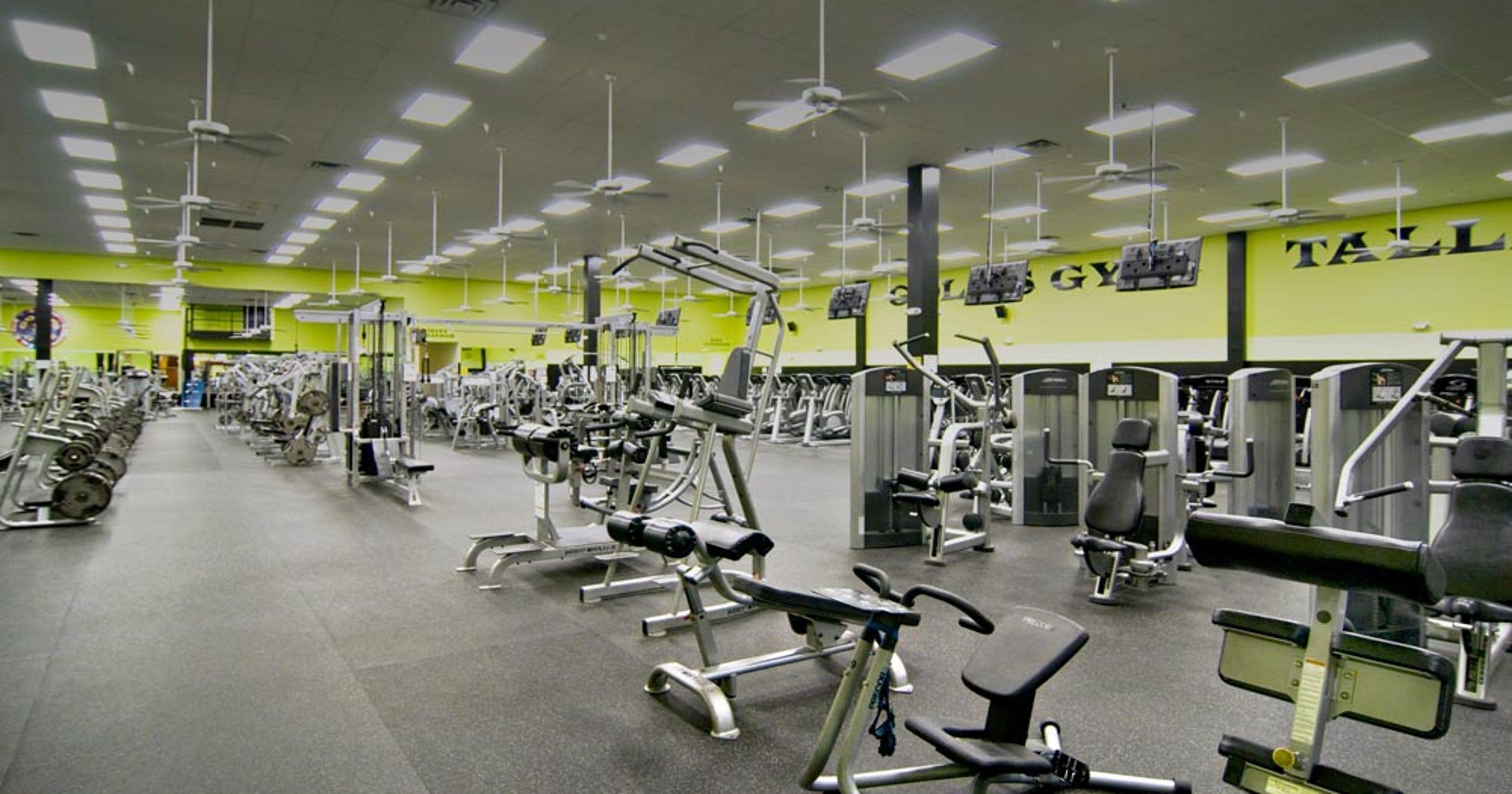 stay profita golds gym - HD1600×800