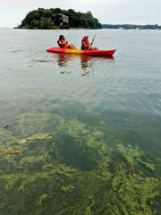 Kayakers paddle through a algae bloom next to Oak Point State Park on South Bass Island Park, Ohio, in Lake Erie on July 29, 2015. Officials in Toledo say they'll do daily water testing for the dangerous toxin that led to a water crisis in the region a year ago. (Eric Albrecht/The Columbus Dispatch via AP) MANDATORY CREDIT
