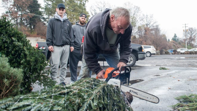 Customers watch as Jeff Hill, an employee at Snavely's Garden Corner, saws off the bottom part the tree's trunk to keep it fresh on Tuesday, Nov. 29, 2016. Snavely's fresh cut Christmas trees cost between $32-$89.