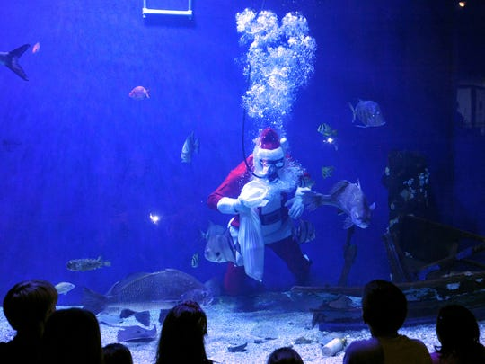 Volunteer Grant Stamps, dressed as Santa, feeds fish at the Mississippi Museum of Natural Science during the Cajun Christmas celebration in Jackson.
