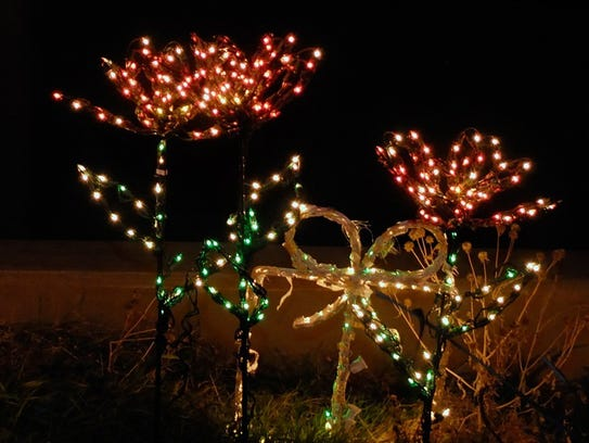 The shapes of plants and animals will light the night