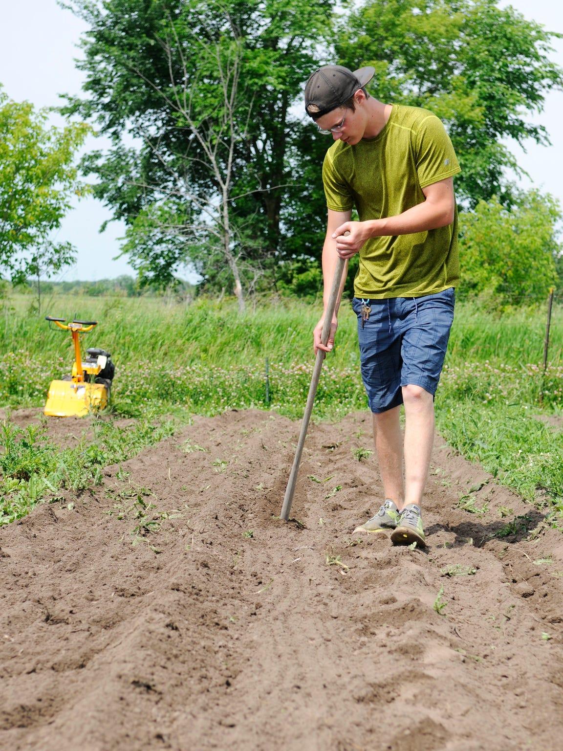 Alex Bertsch prepares to plant watermelon seeds at