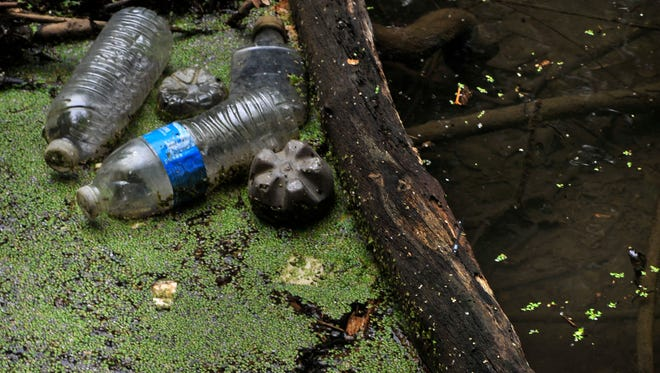 Many Tennessee creeks show evidence of pollution.