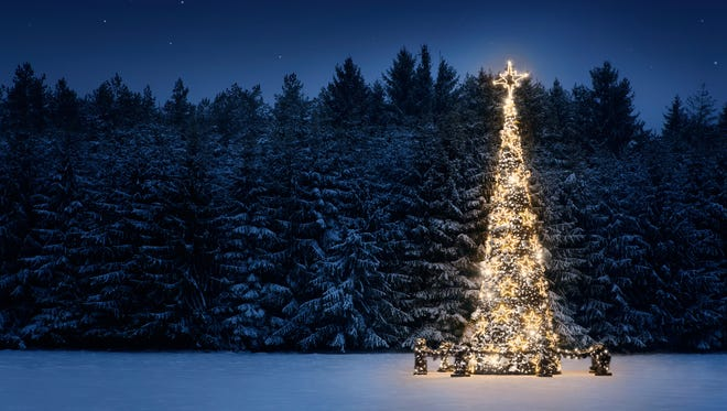 Christmas tree in the snow at night.