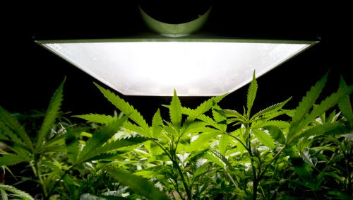 Medical MarijuanaDozens of bills received final passage on the last day of the 2014 legislative year.