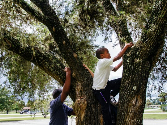 Keithson Dor, 7, climbs a small tree while playing with friends at Farm Worker Village in Immokalee Monday afternoon.  The Collier County Housing Authority is able to use about half of their units at Farm Worker Village for a general affordable housing supply that the county needs.
