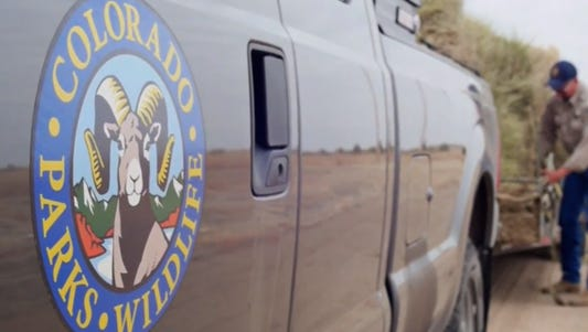 A Las Cruces man allowed his dog to chase and kill a fawn in southern Colorado in violation of the state's hunting rules, the Colorado Parks and Wildlife agency announced this week.