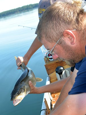 Lake trout grow slowly in some Northwoods lakes, so few fish caught by anglers meet the state's 30-inch size limit.