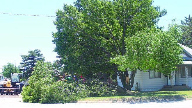 A large tree limb was ripped from its moorings on a front lawn near First and Hamilton streets in Pratt last Tuesday.