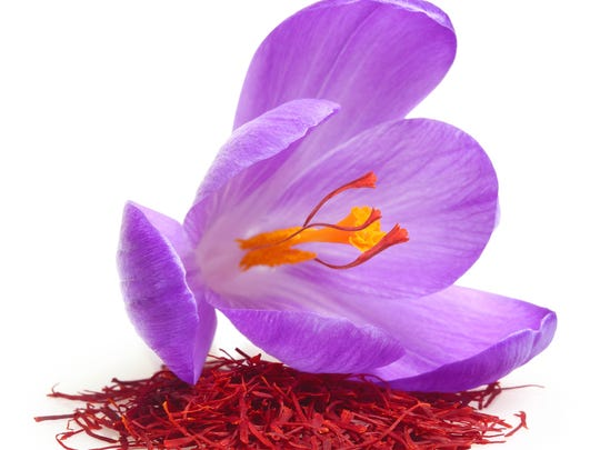 Saffron Crocus is the flower that the spice comes from.