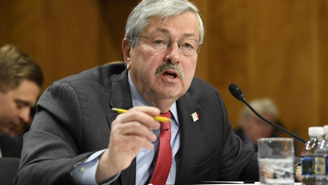 Iowa Gov. Terry Branstad speaks to the Senate Foreign Relations Committee on Tuesday, May 2, 2017, during his confirmation hearing as ambassador to China.