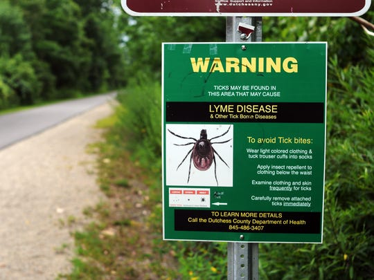 Information on the prevention of Lyme disease and other