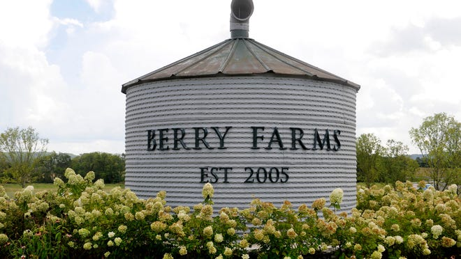 Berry Farms is a mixed-use community taking shape on Franklin's south side. It will eventually include about 1,200 homes, 1.3 million square feet of retail space and 3 million square feet of office space.