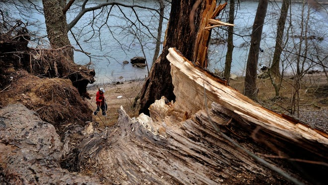 """Hill Island is in the Cumberland River near Madison, owned by the Tennessee Parks and Greenways Foundation and targeted as a wild and free """"outdoor classroom."""" on Monday Feb. 9, 2015, in Nashville in Tenn."""