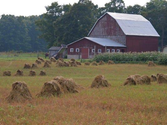 636077958455638982-2015-barns-UP-and-more-476.jpg
