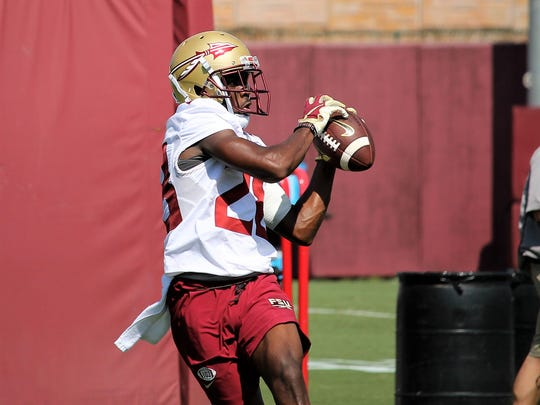 FSU WR D'Marcus Adams catches a pass during the third